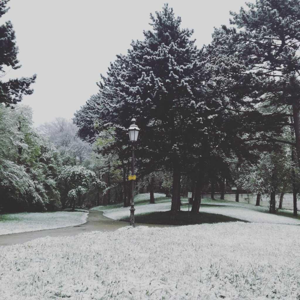 München nannte es Frühling, Winter hat sein Comeback |Johannes Ulrich Gehrke
