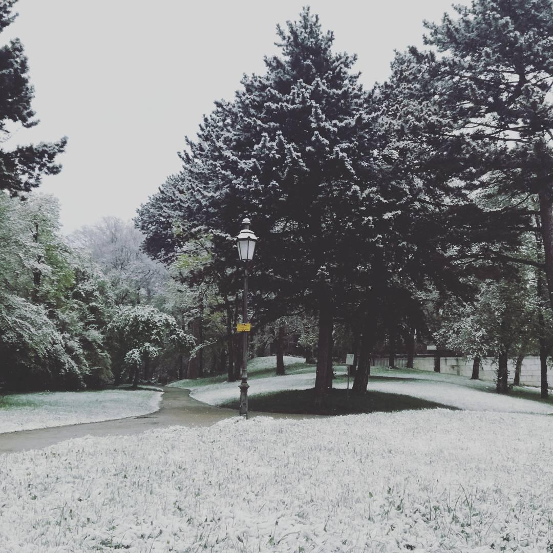 München nannte es Frühling, Winter hat sein Comeback  Johannes Ulrich Gehrke