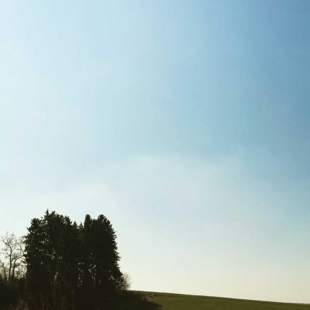Spaziergang in Margertshausen am Waldesrand mit Bauminsel |Johannes Ulrich Gehrke