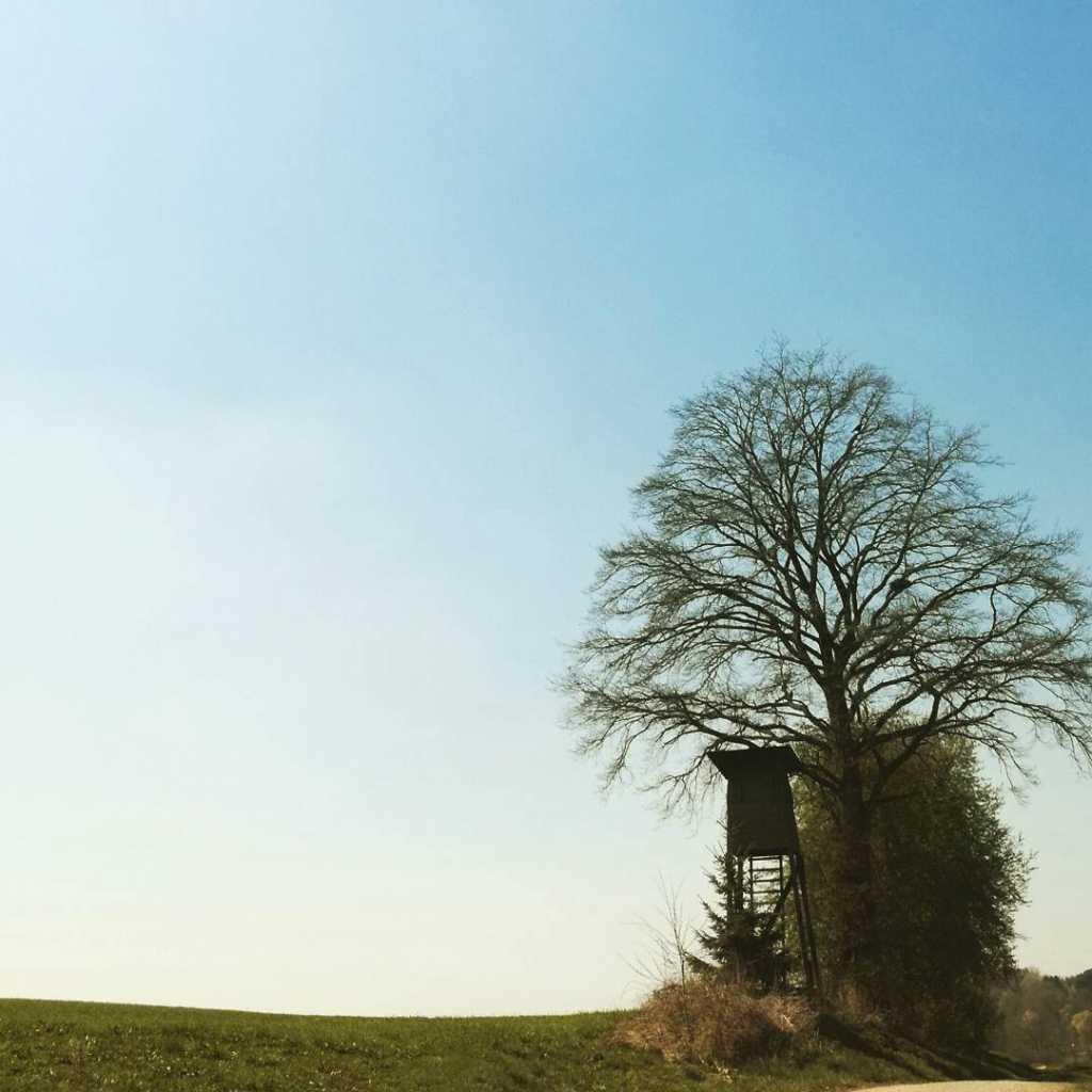 Spaziergang in Margertshausen und ein Hochsitz taucht auf |Johannes Ulrich Gehrke