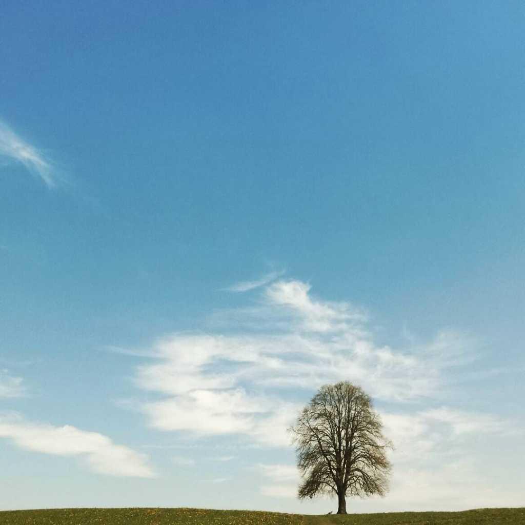 Unter uns die Erde, über uns nichts ausser Freiheit |Johannes Ulrich Gehrke
