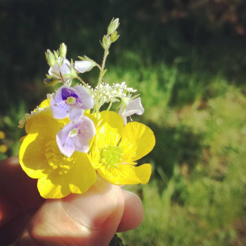 Frühling, Frühjahr und war früher wirklich alles besser? |Johannes Ulrich Gehrke