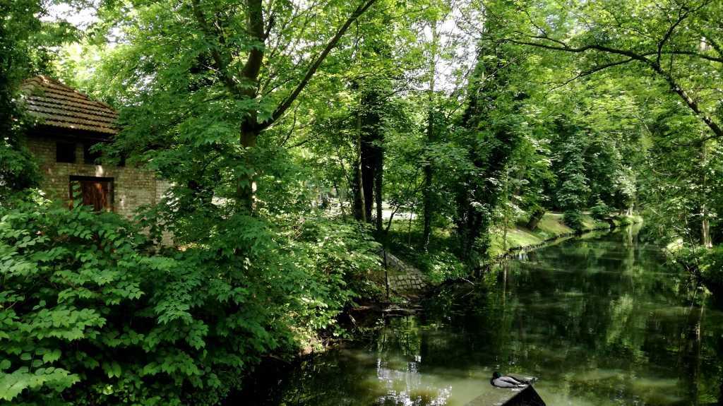 Eine eigene Welt: Kanalblick in den Königs Wusterhausener Schloßpark |Johannes Ulrich Gehrke