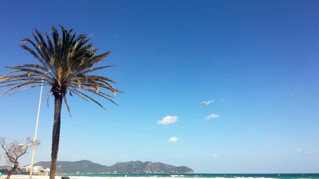 Frühlungs-Mini-Urlaub in Cala Millior, Mallorca |Johannes Ulrich Gehrke